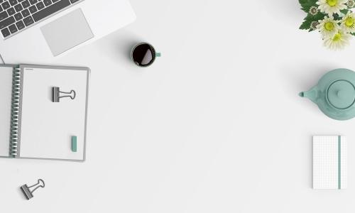新网站如何开始做SEO优化?